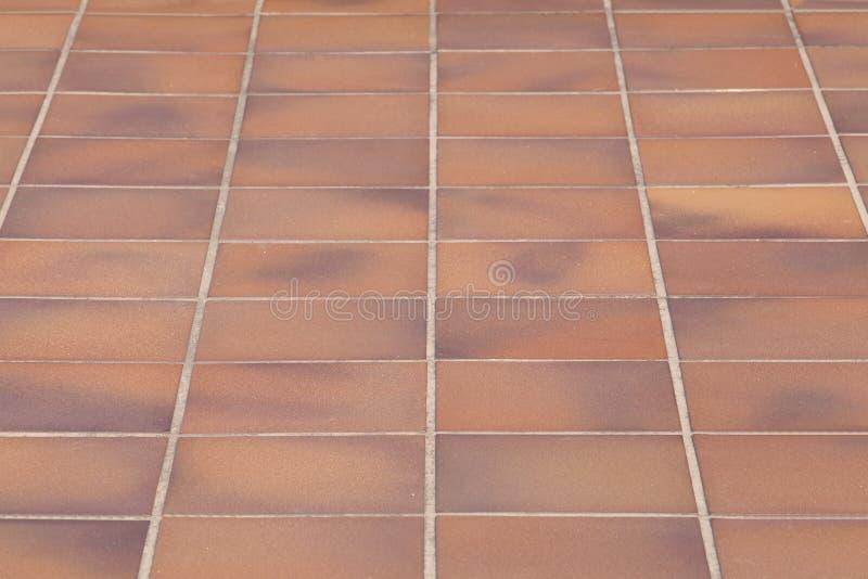 Harmonisk bakgrund för golvtegelplattor royaltyfria bilder