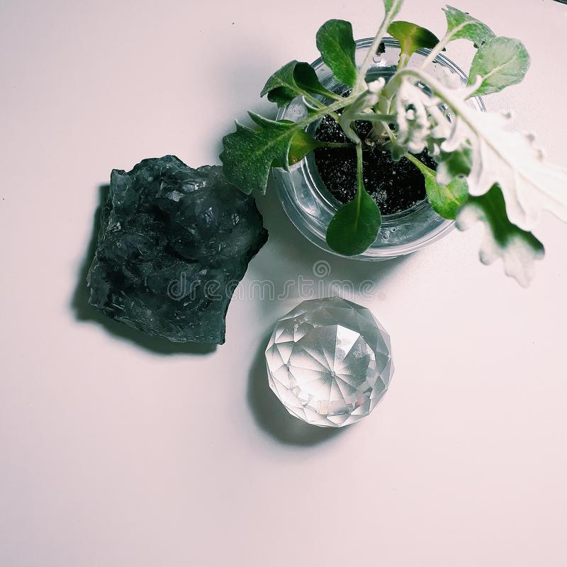 Harmony. Plants and rocks ametist crystal nature decoration love clean home light royalty free stock photo