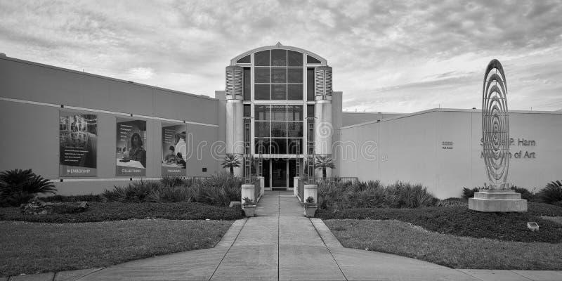 Harn Museum da arte imagens de stock royalty free
