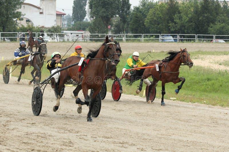 Harness Racing Editorial Photo