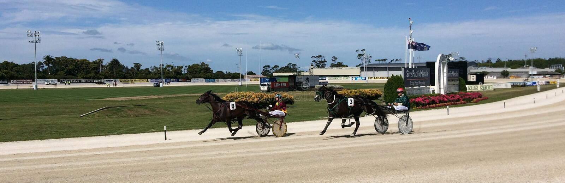 Harness racing in Alexandra Park Raceway in Auckland New Zealand stock image