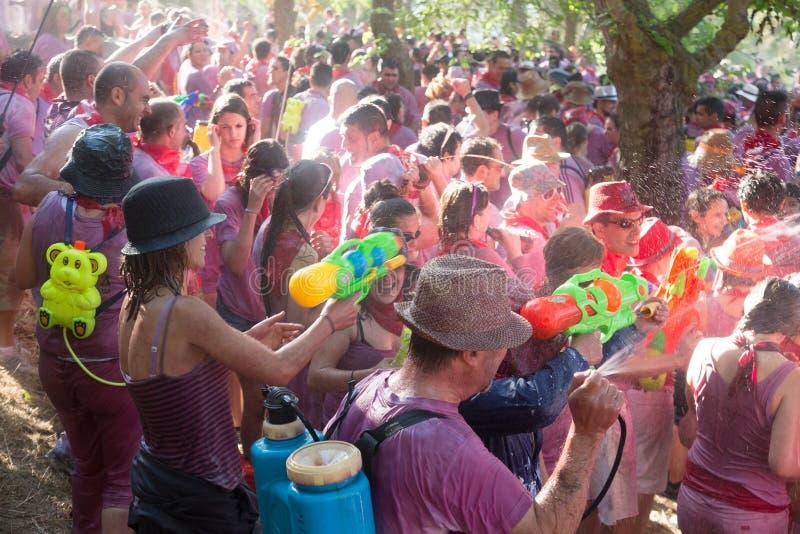 Haro Wine Festival, La Rioja stock foto's