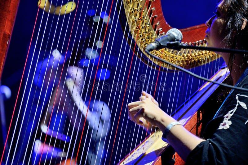 Harp el jugador de la actuación en directo de Barr Brothers (banda) en el festival de Bime imagen de archivo libre de regalías