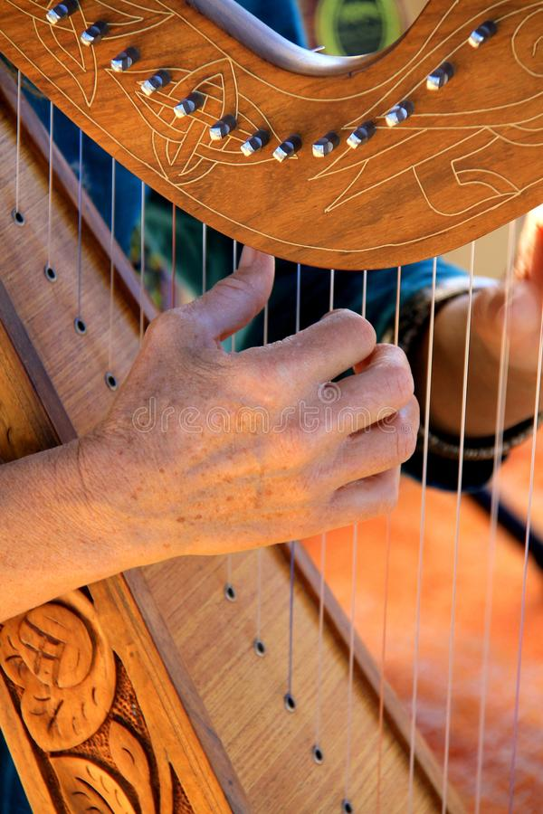 Harp player royalty free stock photo