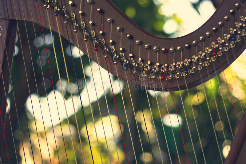 Harpainstrument, Icke-pedal harpa arkivbild