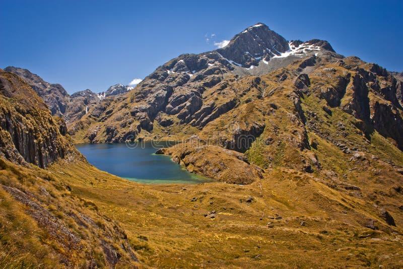 Harris Lake do vale da trilha de Routeburn em Nova Zelândia fotografia de stock