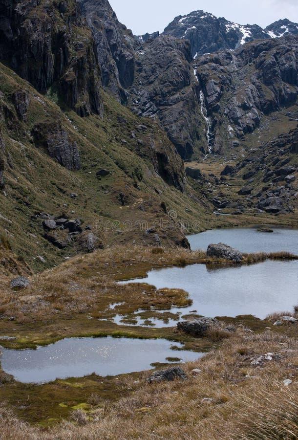 Harris Lake och bergen på den stora Routeburnen går i Nya Zeeland royaltyfri bild
