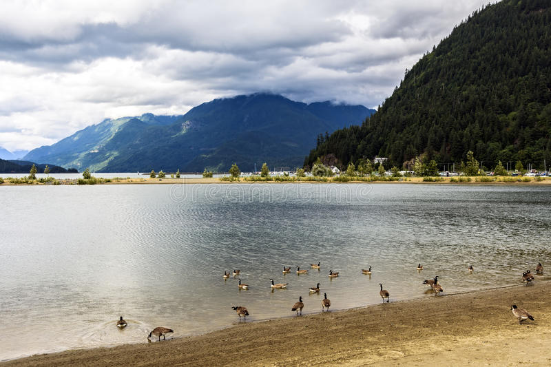 Harrison Hot Springs. Lake with mountains in the background in Harrison Hot Springs, British Columbia, Canada stock photo