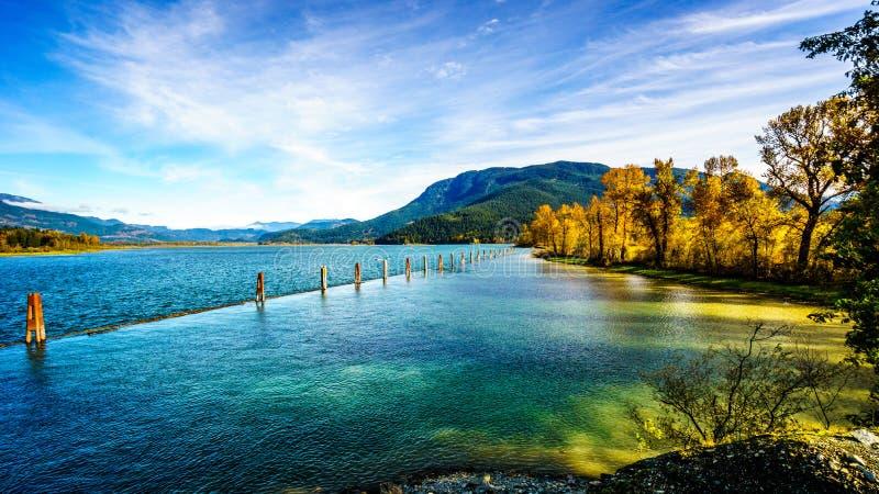 Harrison rzeka przy Harrison Mleje gdy ono płynie przez Fraser doliny fotografia royalty free
