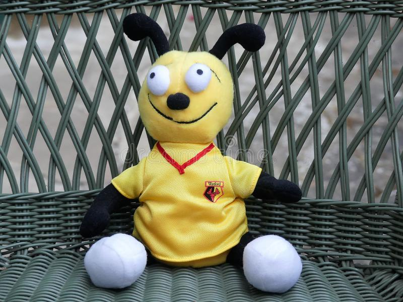 Harry das liebenswürdige Maskottchenspielzeug der Hornisse gekleidet in der Watford-Fußball-Vereinausrüstung lizenzfreie stockbilder