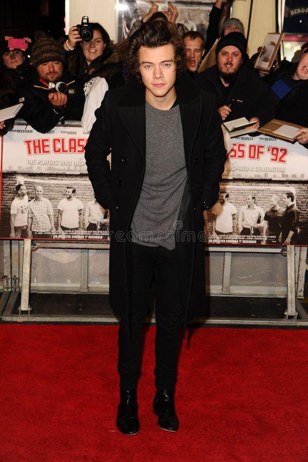 Harry Styles royaltyfri fotografi