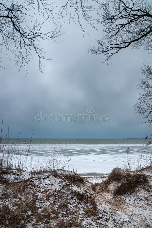 Harsh winter landscape view of the freezing lake from the shore through the coastal bumps and bare branches of trees natuurlijk royalty-vrije stock afbeelding