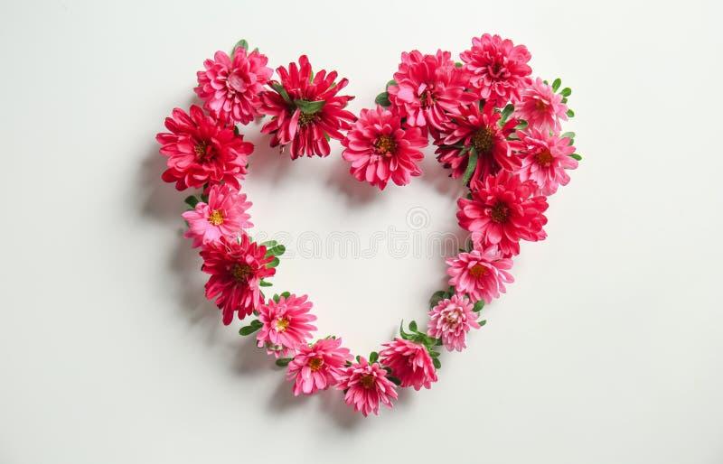 Hart van mooie chrysantenbloemen wordt gemaakt op witte achtergrond die royalty-vrije stock fotografie