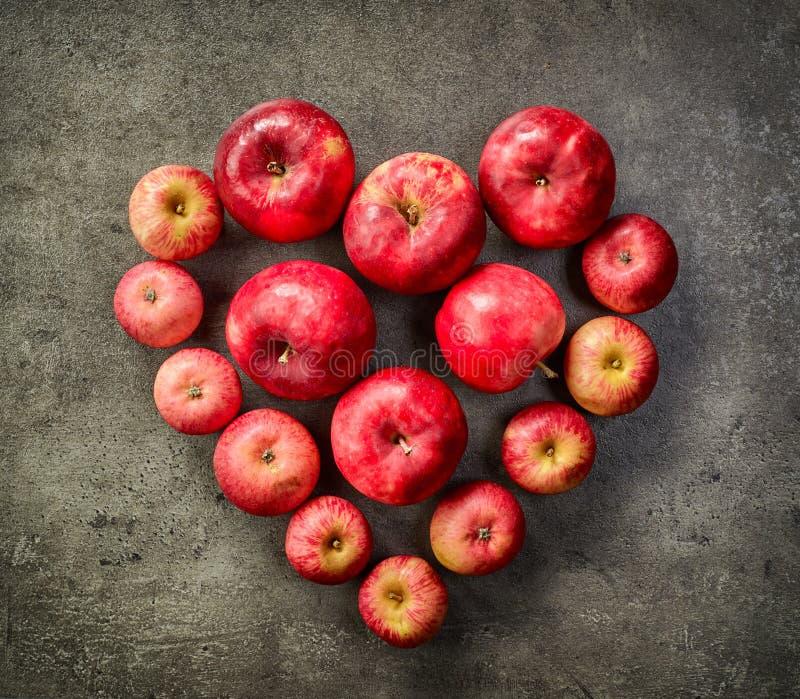 Hart van rode appelen stock fotografie