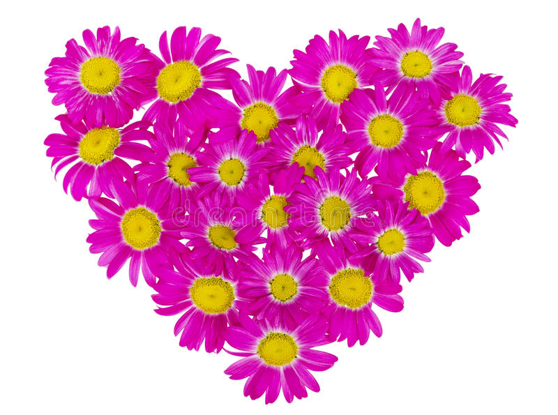 Hart van roze madeliefjes royalty-vrije stock afbeeldingen