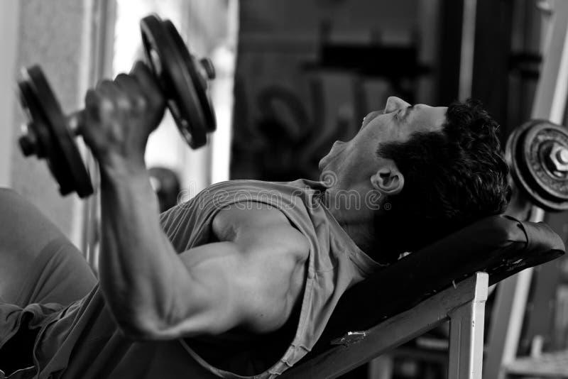 Hartes Training des Bodybuilders in der Gymnastik lizenzfreie stockfotografie