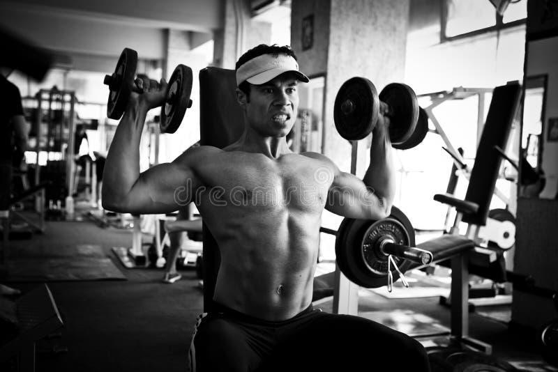 Hartes Training des Bodybuilders in der Gymnastik lizenzfreie stockfotos