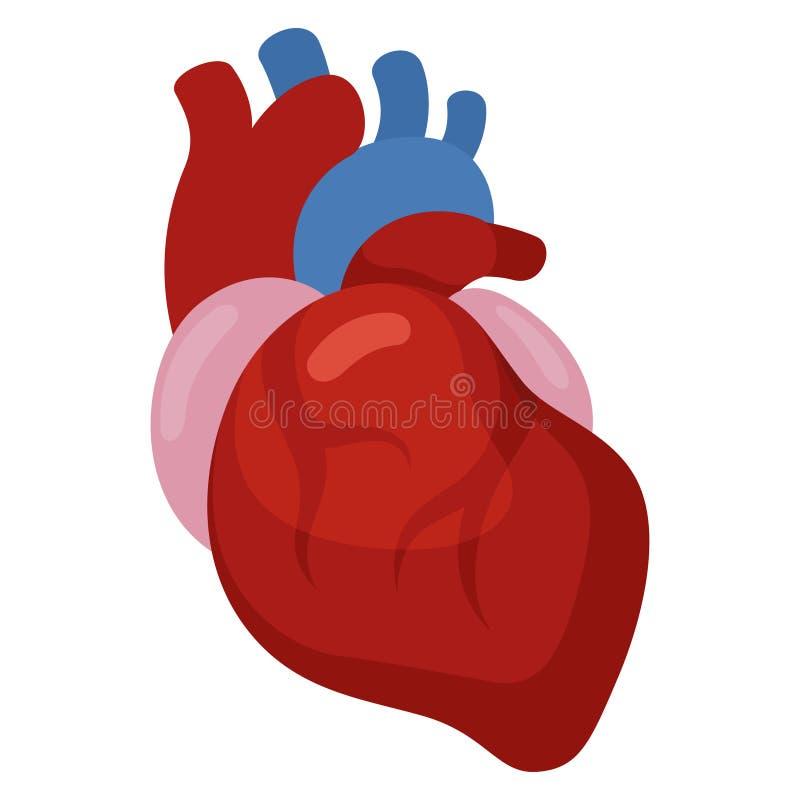 Hartpictogram, cardiologie en geneeskunde, gezondheidssymbool royalty-vrije illustratie