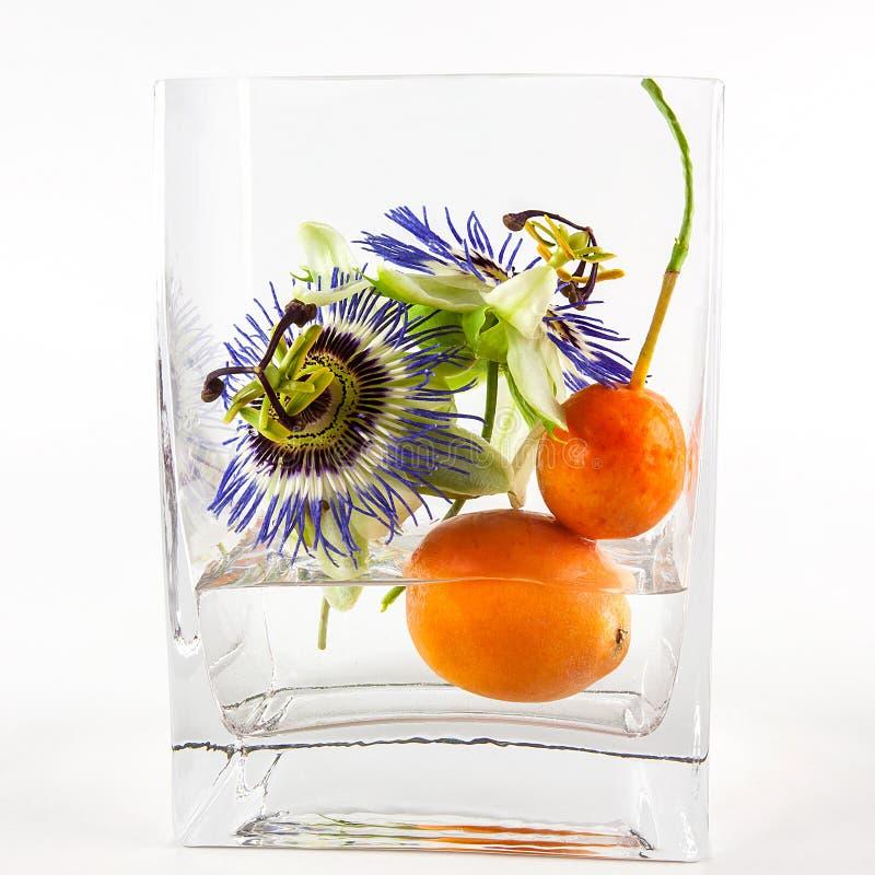Hartstochtsbloemen en fruit in vaas royalty-vrije stock foto