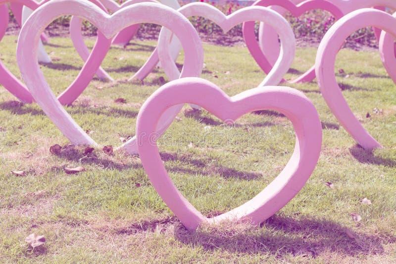 Hartvorm op het gras, uitstekende filter royalty-vrije stock foto's