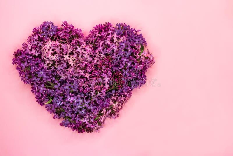 Hartvorm van purpere lilac bloemen op pastelkleur roze achtergrond die wordt gemaakt Het symbool van de liefde De ruimte van het  royalty-vrije stock afbeelding