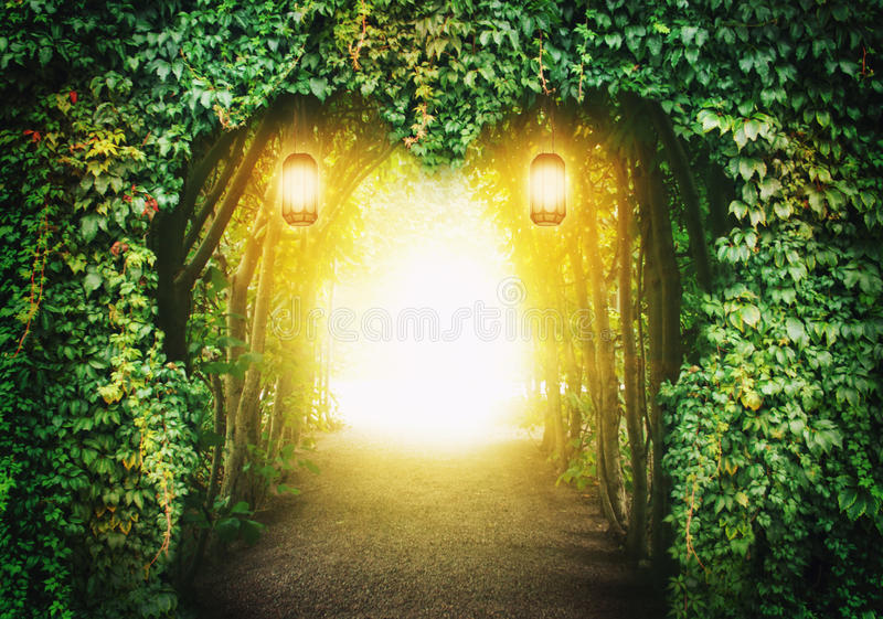 Hartweg in een fantasiebos royalty-vrije stock foto