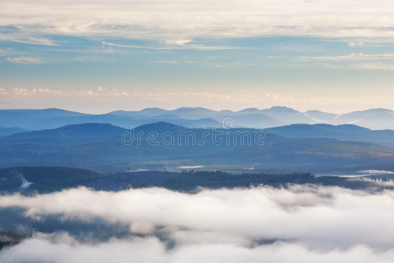 Hartz berg nationalpark, Tasmanien royaltyfri foto