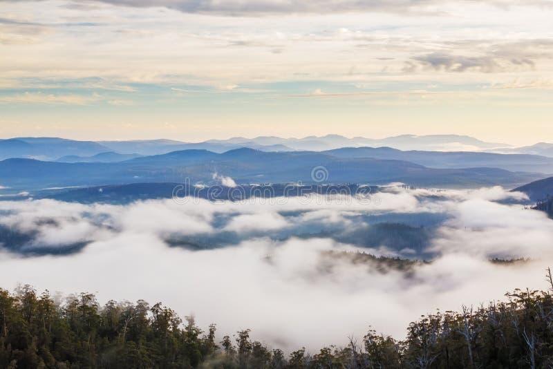 Hartz-Berge Nationalpark, Tasmanien stockbilder