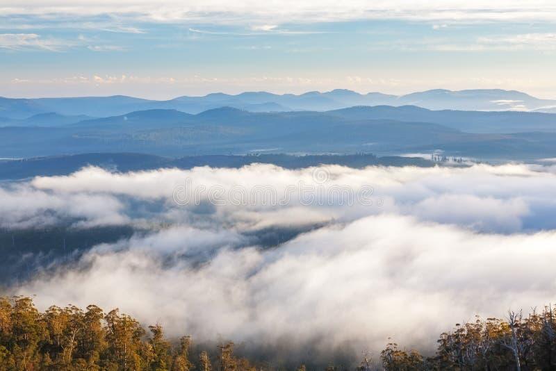 Hartz-Berge Nationalpark, Tasmanien lizenzfreie stockfotografie