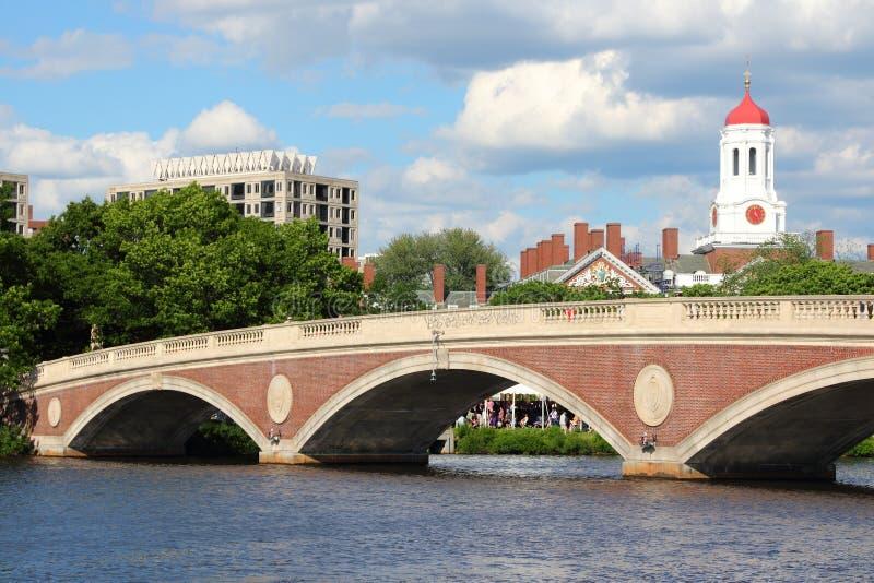 Harvard royalty-vrije stock afbeeldingen