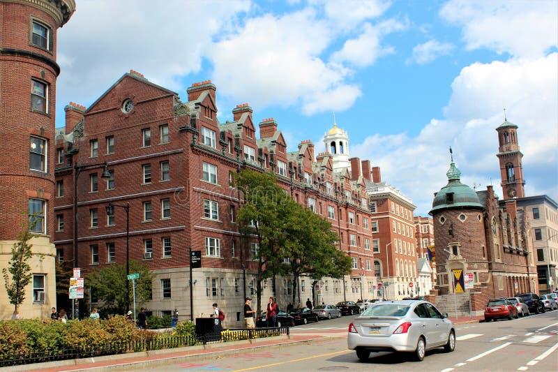 Harvard fyrkant royaltyfria bilder