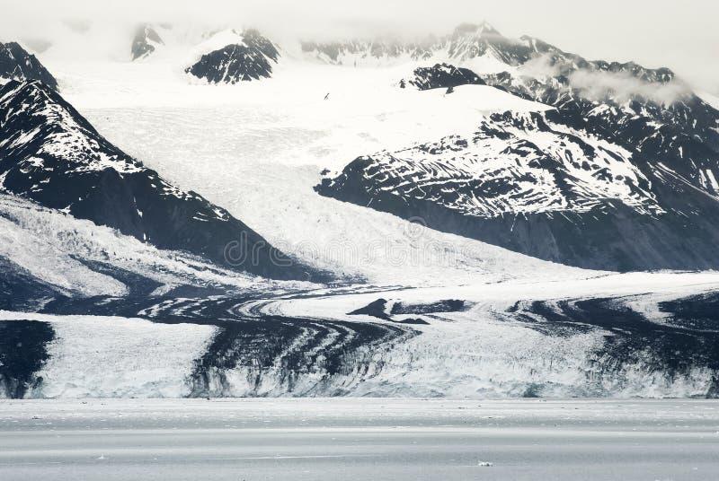 Harvard-Gletscher in College-Fjord, Prinz William Sound, Alaska lizenzfreies stockfoto