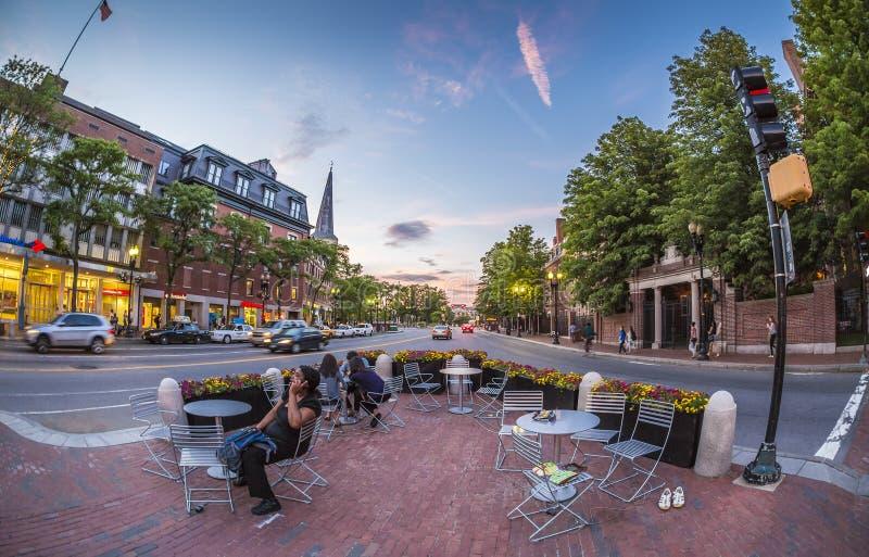 Harvard-Quadrat in Cambridge, MA, USA lizenzfreie stockfotografie