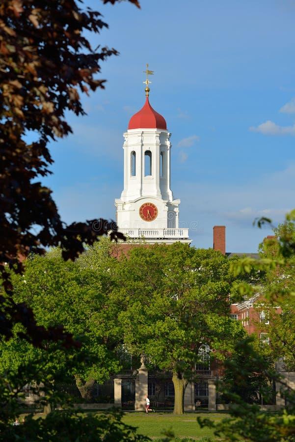 Download Harvard Stock Images - Image: 31170924