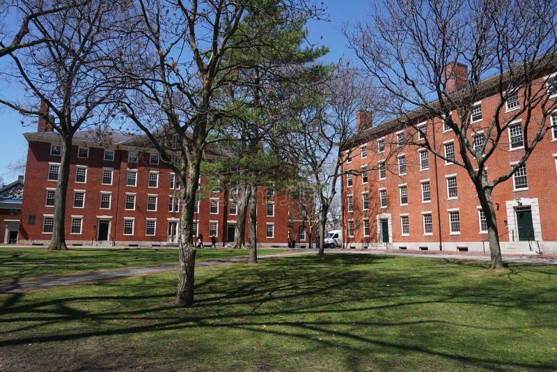 Harvarduniversitetetuniversitetsområde, forntida tegelstenbyggnad och gräsmatta i vår arkivbild