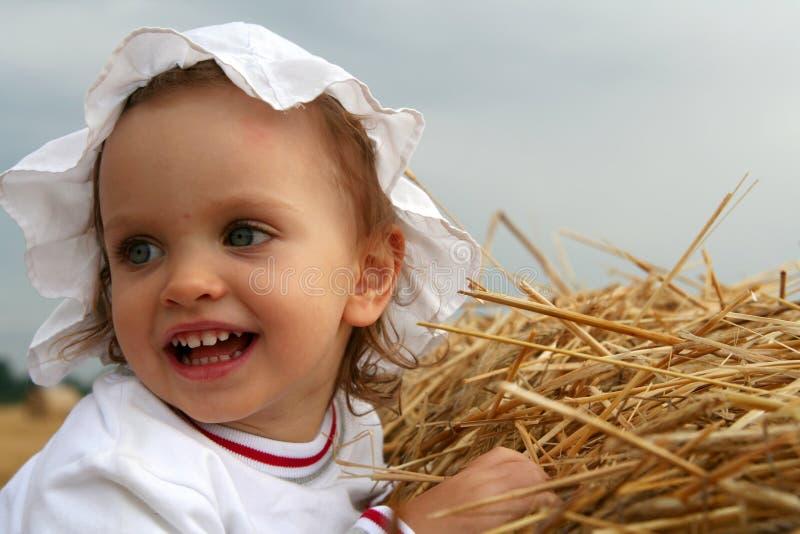 Download After harvest stock image. Image of bales, cropland, golden - 1126649