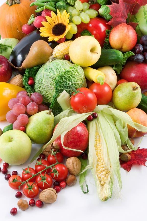 Download Harvest stock image. Image of horn, grapes, leaves, gourd - 1502489