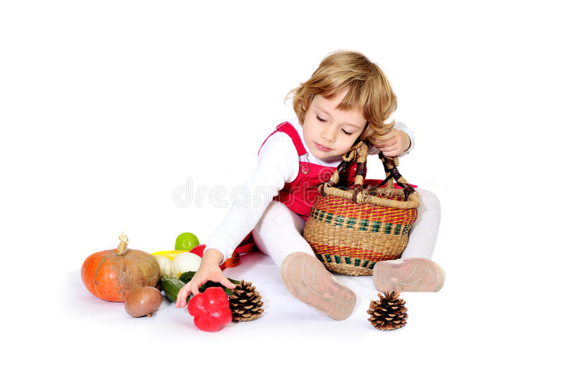 Download Harvest stock photo. Image of laughing, onion, hamper - 17227342