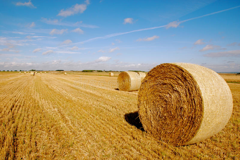 Download Harvest stock photo. Image of bale, harvest, arable, round - 26923872