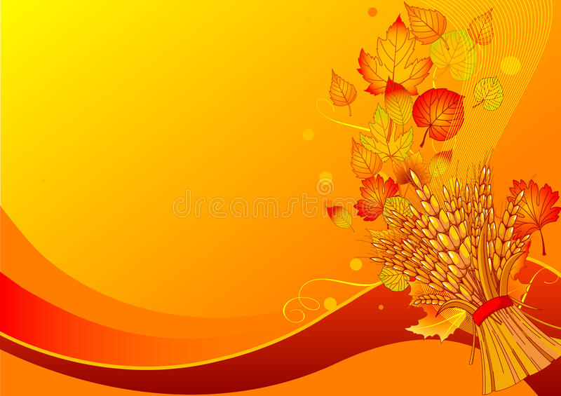 Harvest background. With place for your text