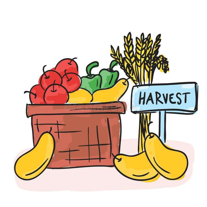 Harvest - basket with fruits and vegetables vector illustration