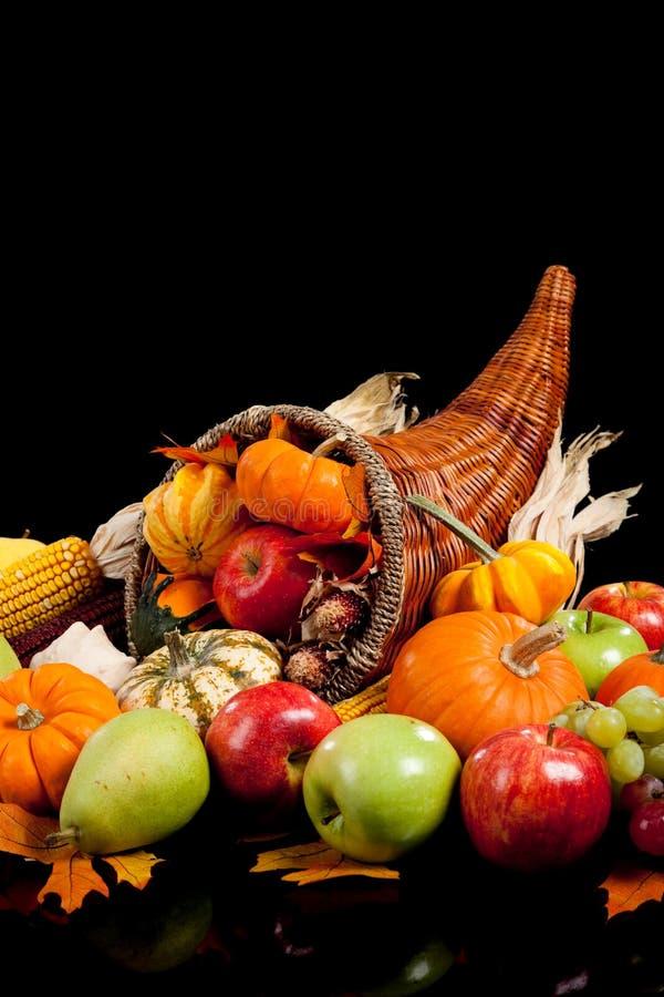 Download Harvest cornucopia stock photo. Image of autumn, holiday - 11360490