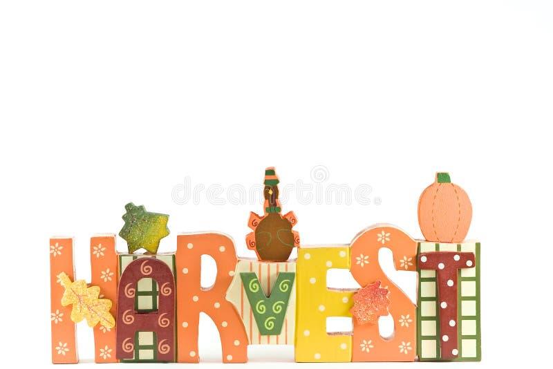 Harvest decoration. royalty free stock photos