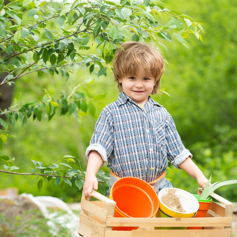 Harvest on the farm. The boy works on the ground. Organic concept. Eco products. Happy child nature day. stock images
