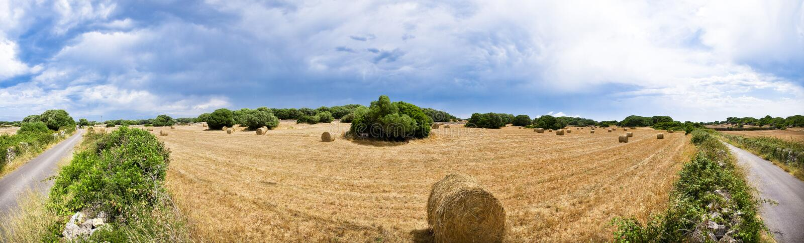 Download Harvest Fields Royalty Free Stock Photography - Image: 10613017
