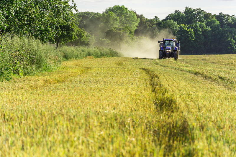 Harvest, fields and meadows during harvest royalty free stock photography