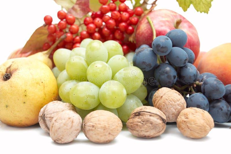 Download Harvest: Fresh Autumn Fruits On White Background Stock Photo - Image: 16289428