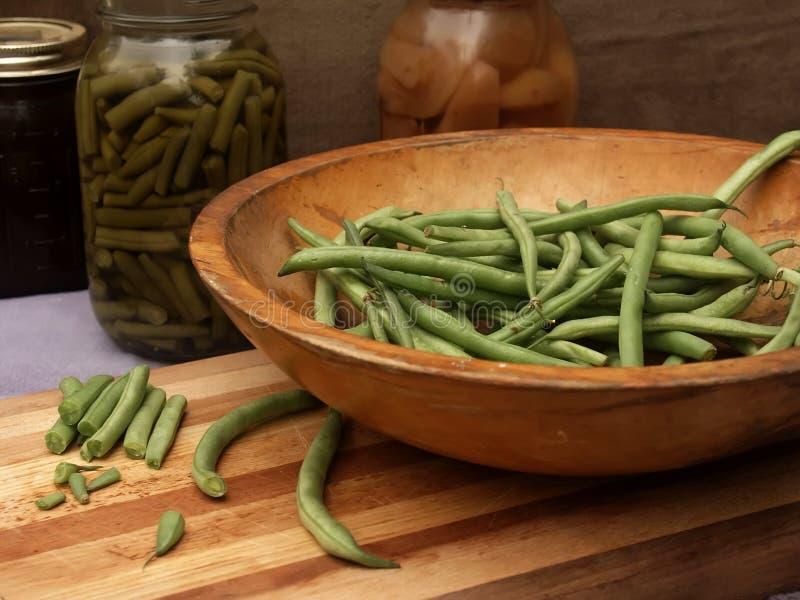 Harvest of fresh green beans stock photos