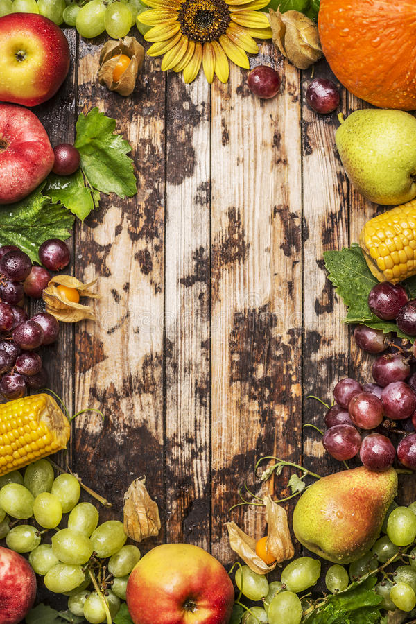 Harvest fruits, berries and vegetables with sunflower on a rustic wood background, frame, top view royalty free stock photography