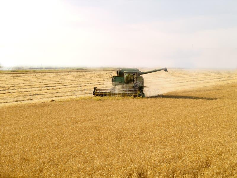 Download Harvest Gold stock image. Image of harvest, season, combine - 2888669